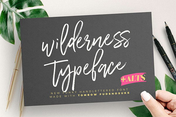 Wilderness Typeface Free Font