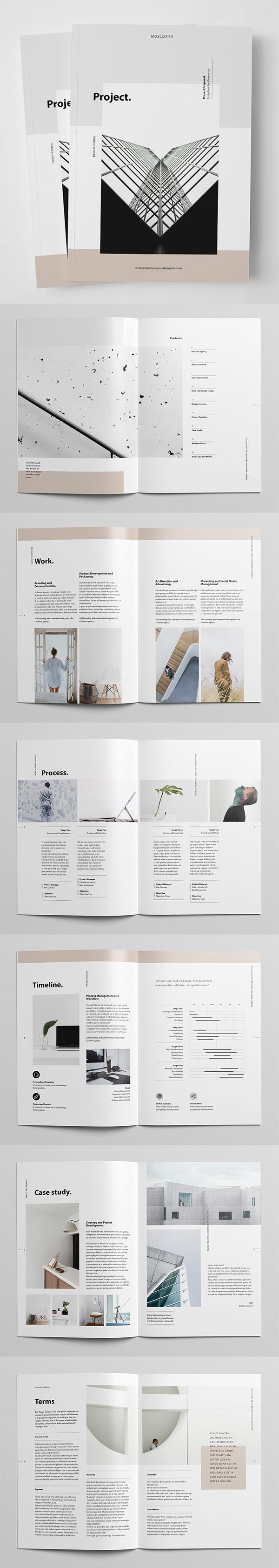 Professional Business Proposal Templates Design - 5