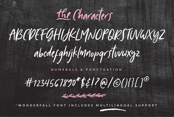Wonderfall Script Font Letters