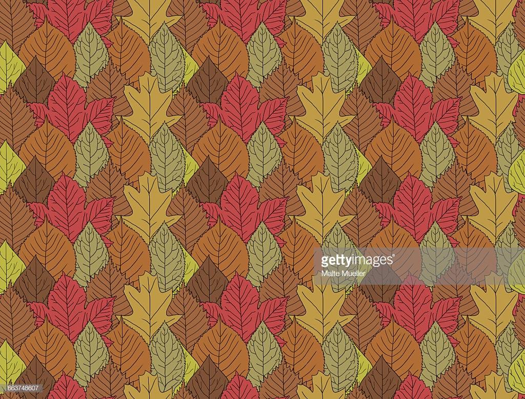 Full frame shot of autumn leaves