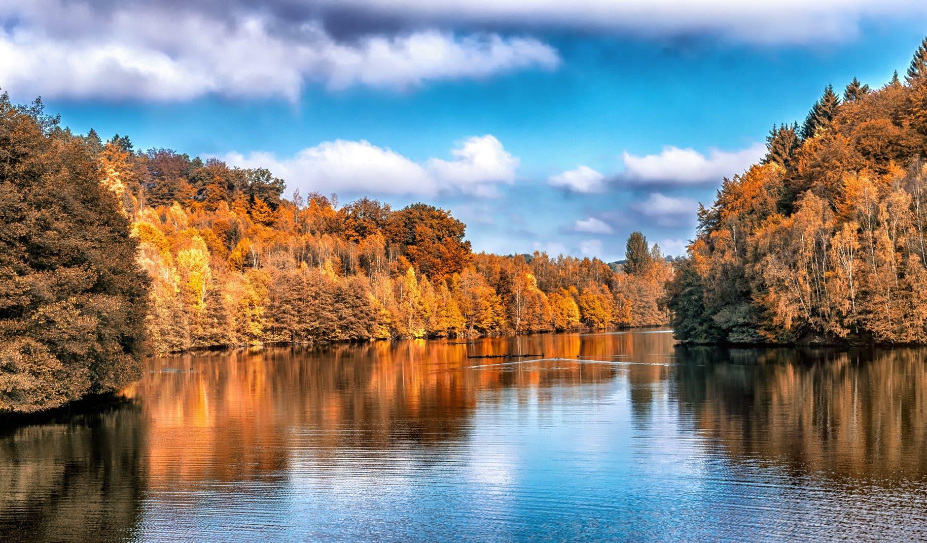 fall design stock photo landscape