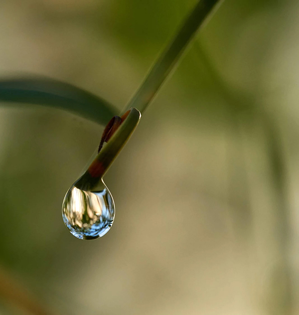 Beautiful Examples Of Water Drop Photography - 26