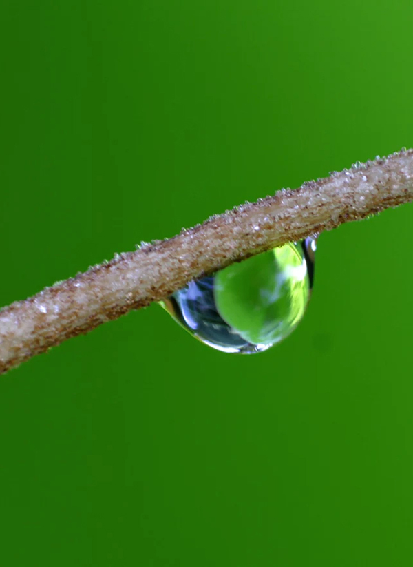 Beautiful Examples Of Water Drop Photography - 28