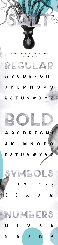 Salt Minimalist Sans Serif  Free Font