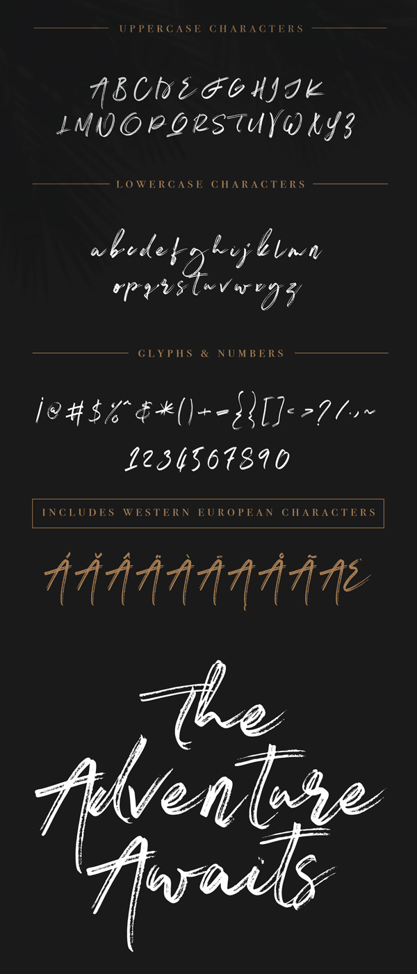 Ashfort Brush Script Free Font Letters