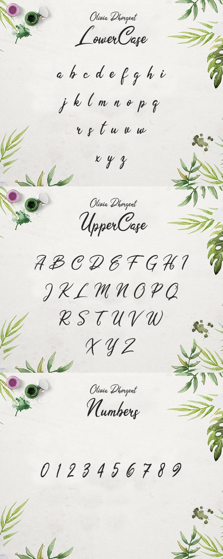 Olivia Dhorgent Script Free Font Letters