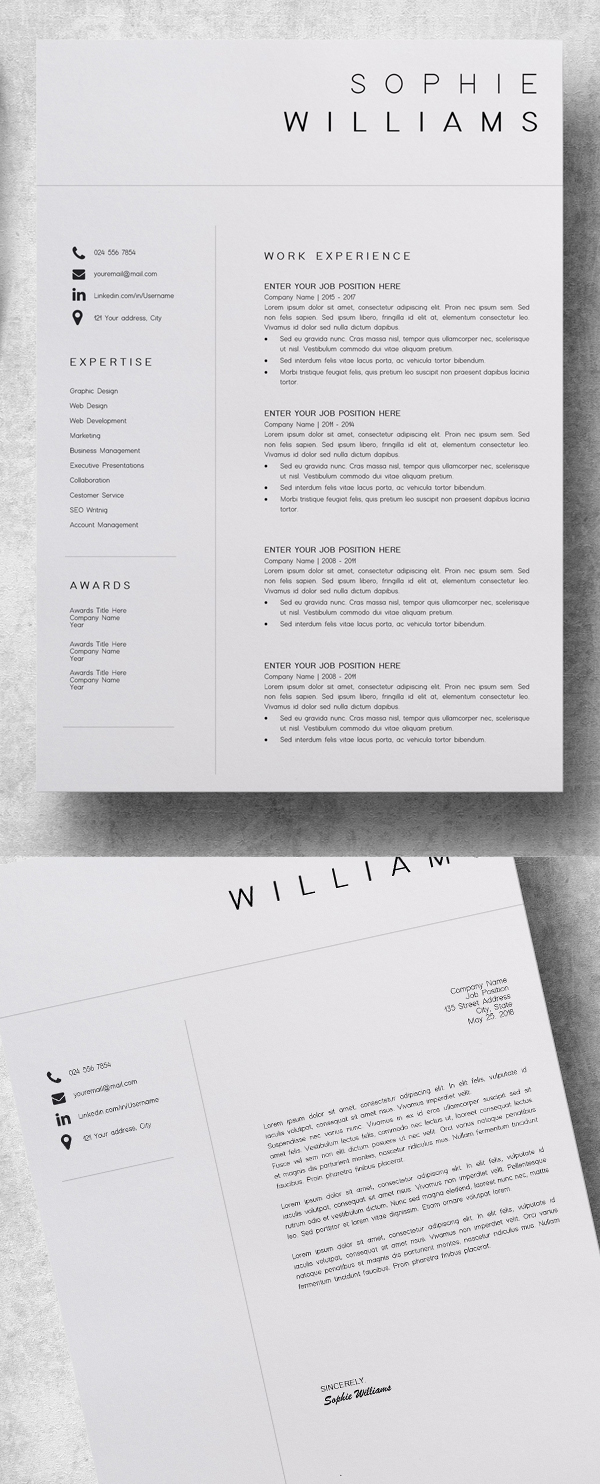 Useful and Professional Resume Templates
