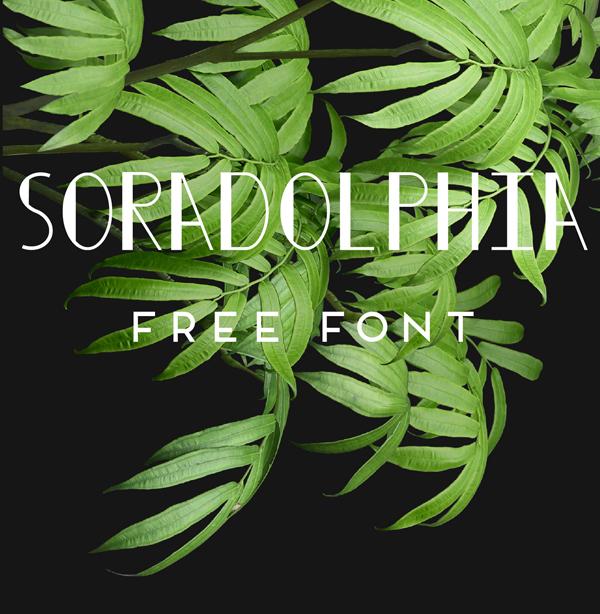 Soradolphia Free Font