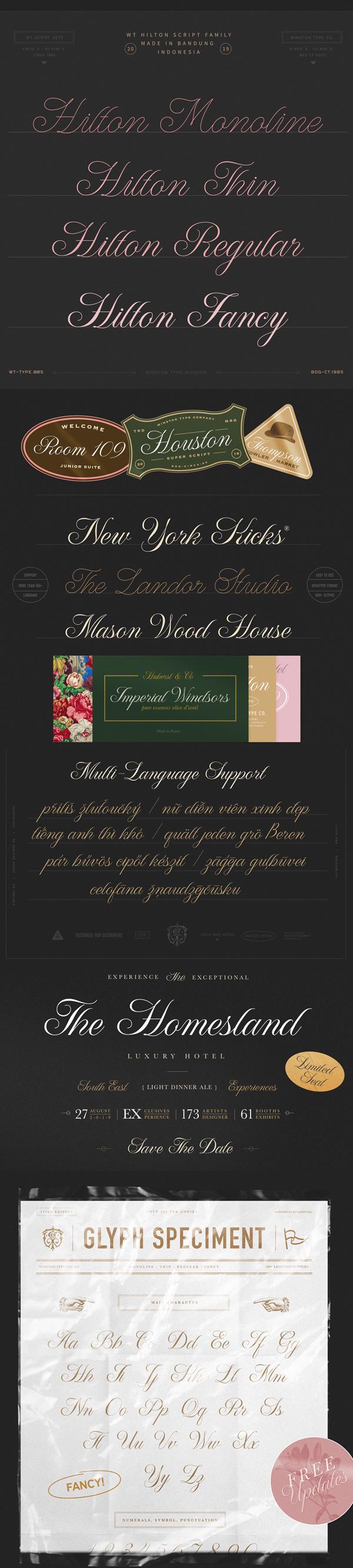 WT Hilton Script Free font letters
