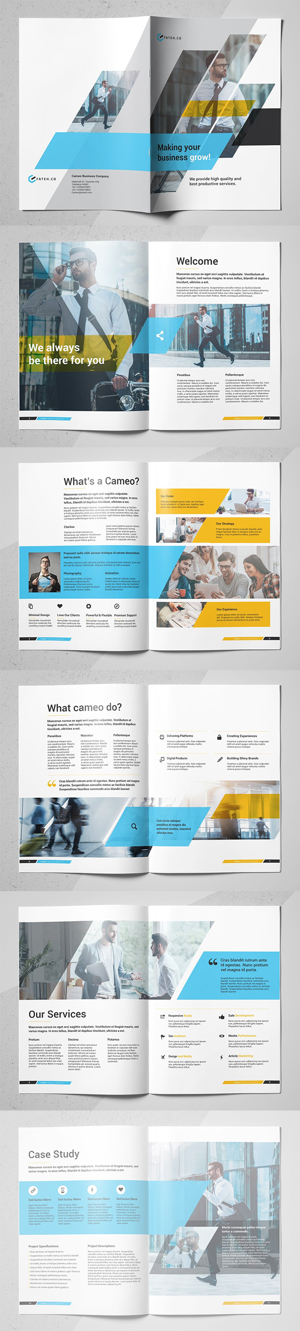 Cameo Business Brochure