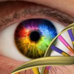 Our color vision is limited