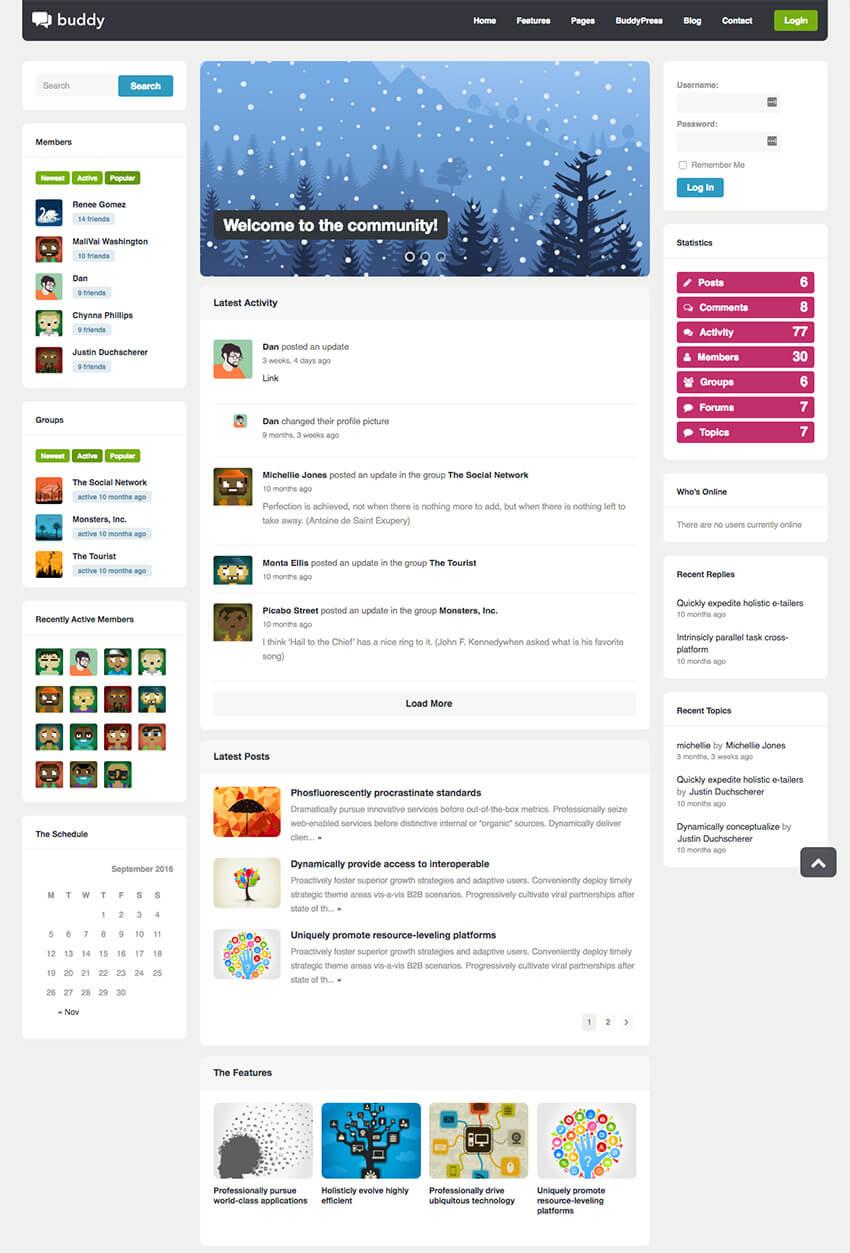 Buddy Multipurpose Social WordPress BuddyPress Theme