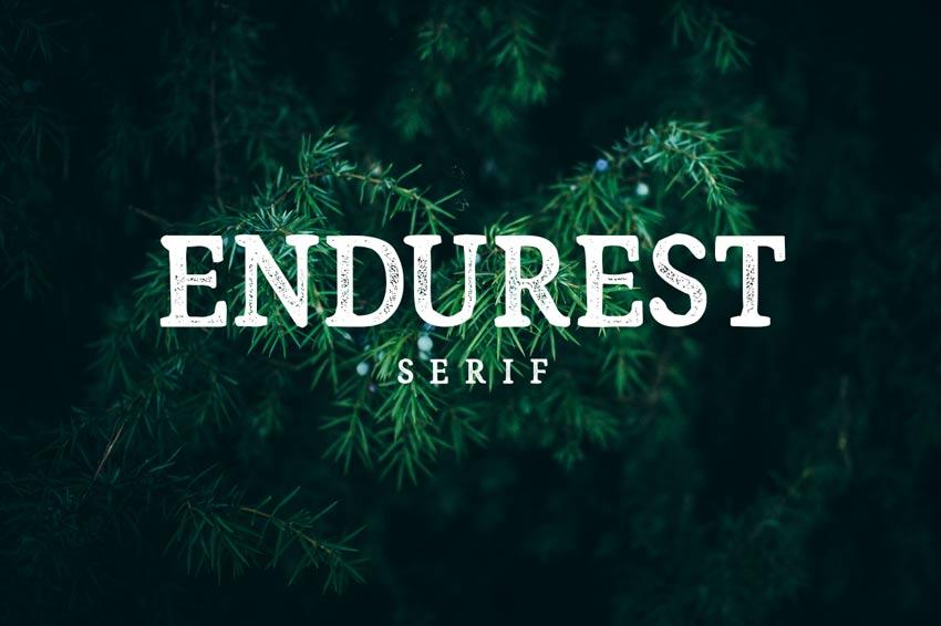 Endurest Typeface