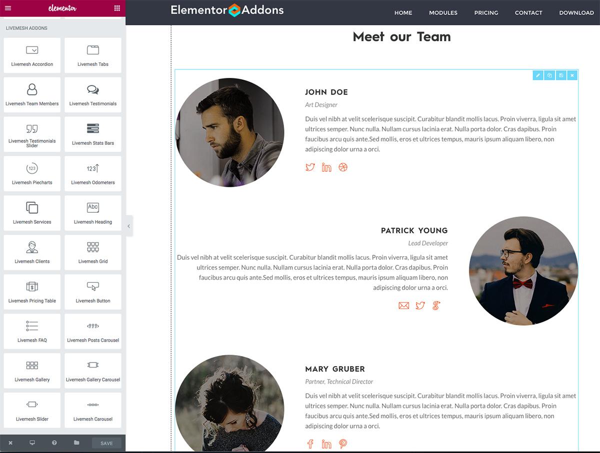 Livemesh Addons for Elementor Page Builder