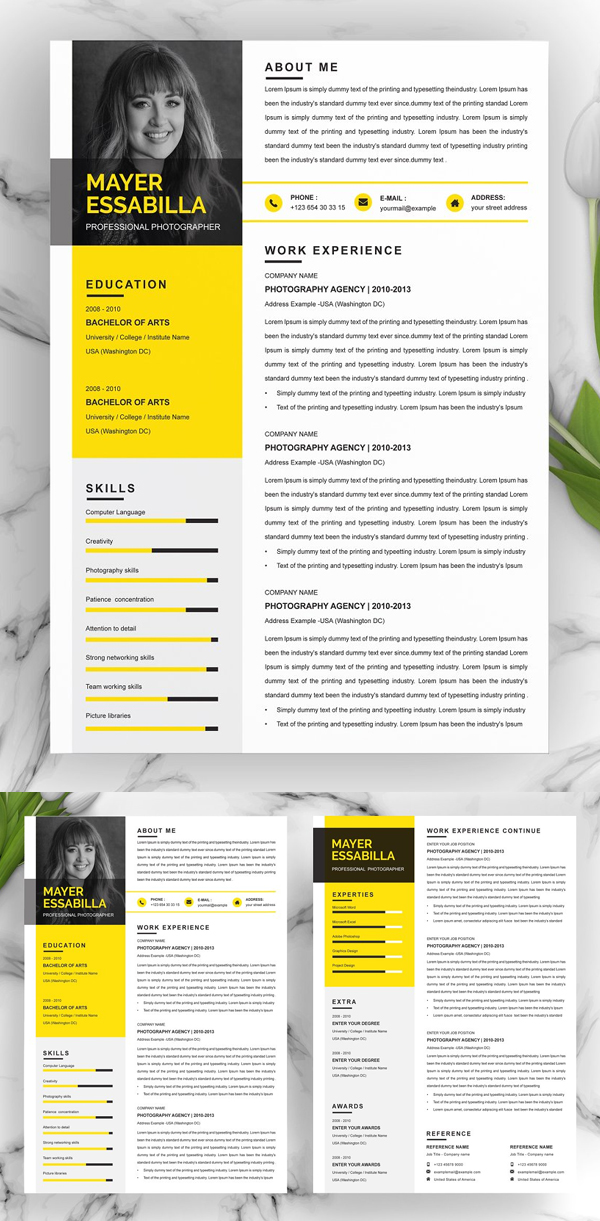 Professional Three Page Resume Template