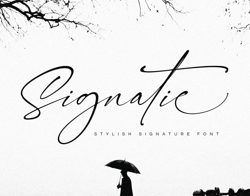 FREE  Signatie Signature Type Fonts