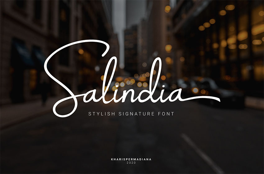 Salindia - Fancy Signature Font Download