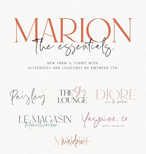 The Essentials - Logo Font
