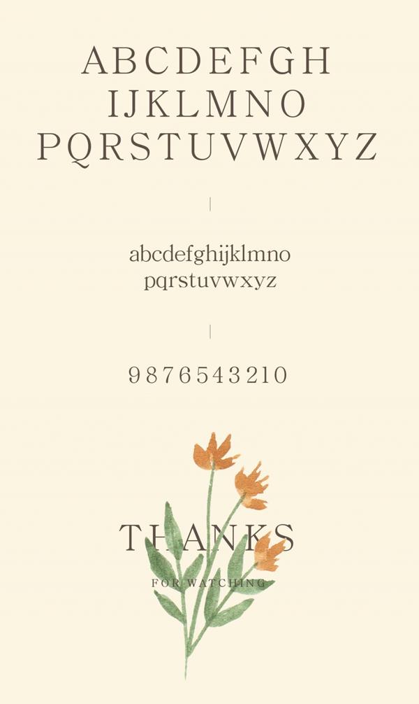 Bellina Serif Font Letters