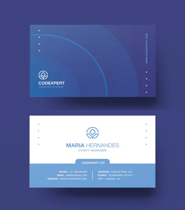 Blue Simple Business Card Design