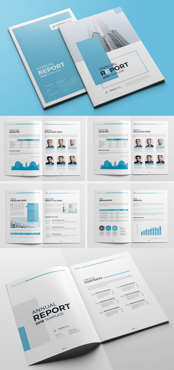 The Blue Annual Report
