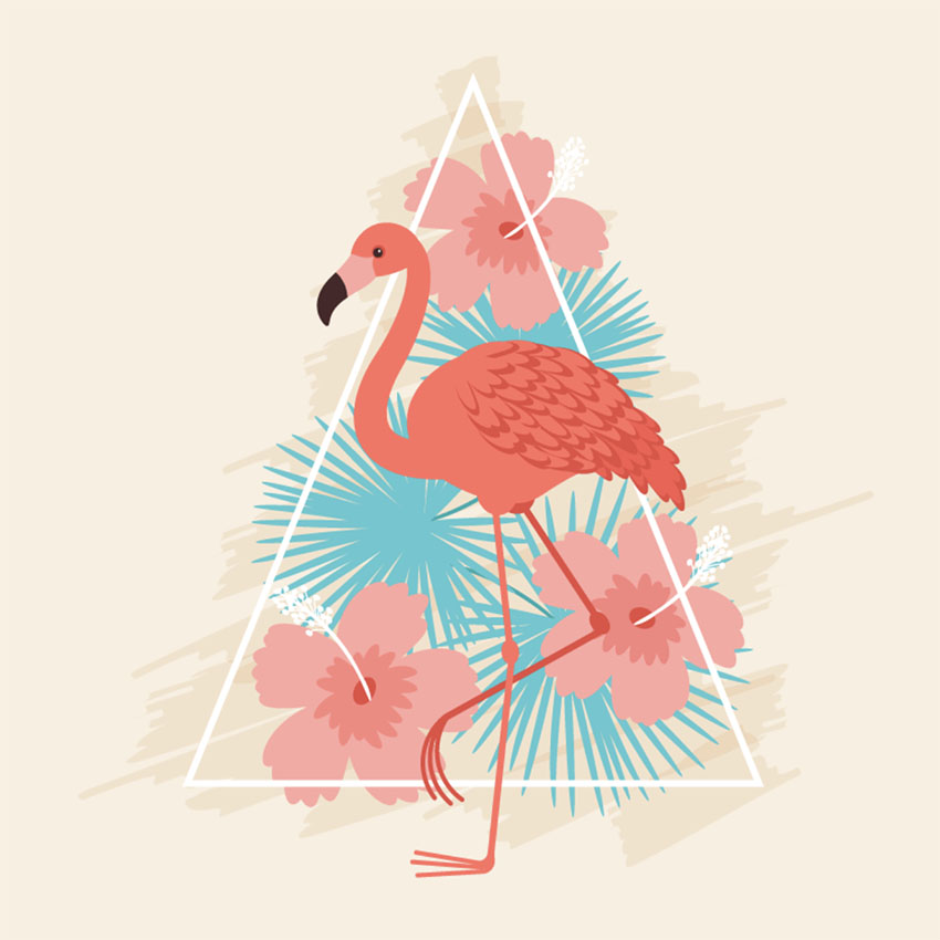 How to Use Brushes in Adobe Illustrator to Create a Colorful Flamingo