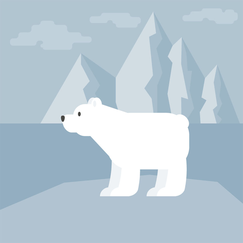 How to Create a Polar Bear Illustration in Adobe Illustrator