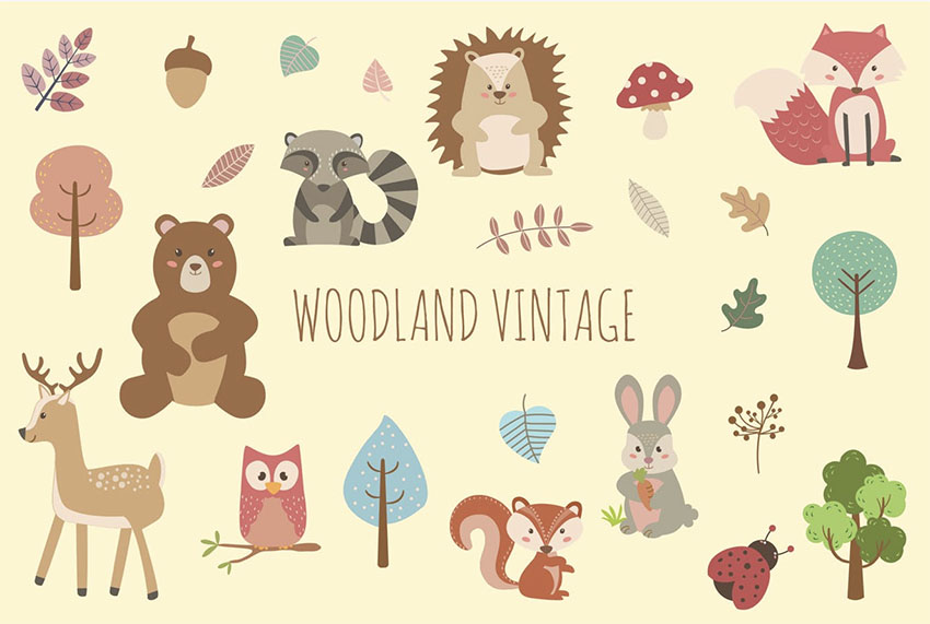 Vintage Animal Illustrations