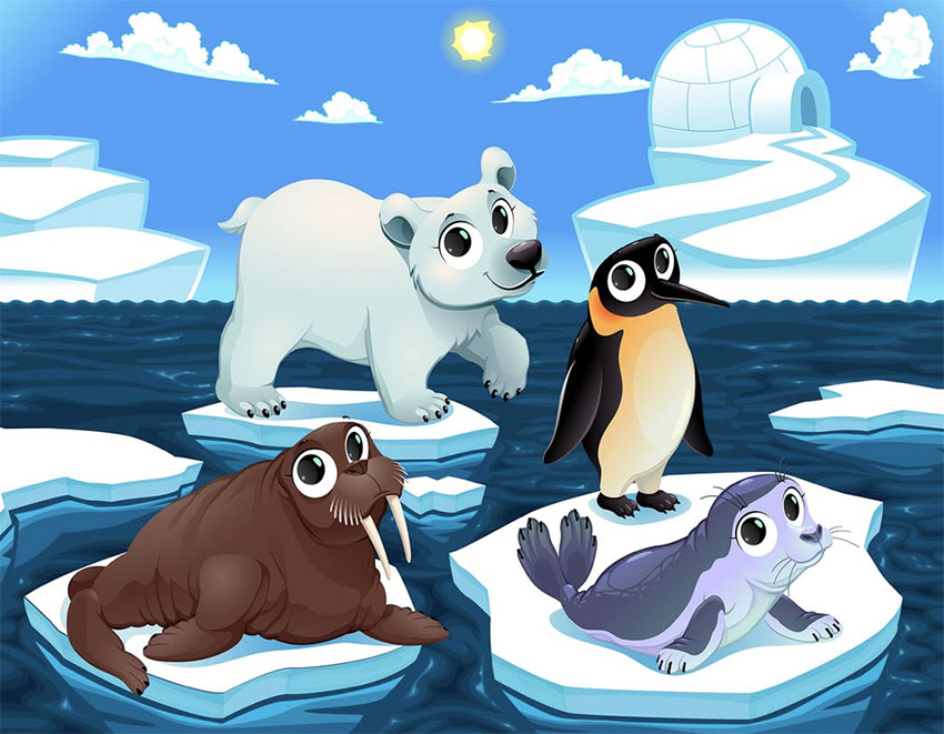 Cute Animals Illustrations on the Ice
