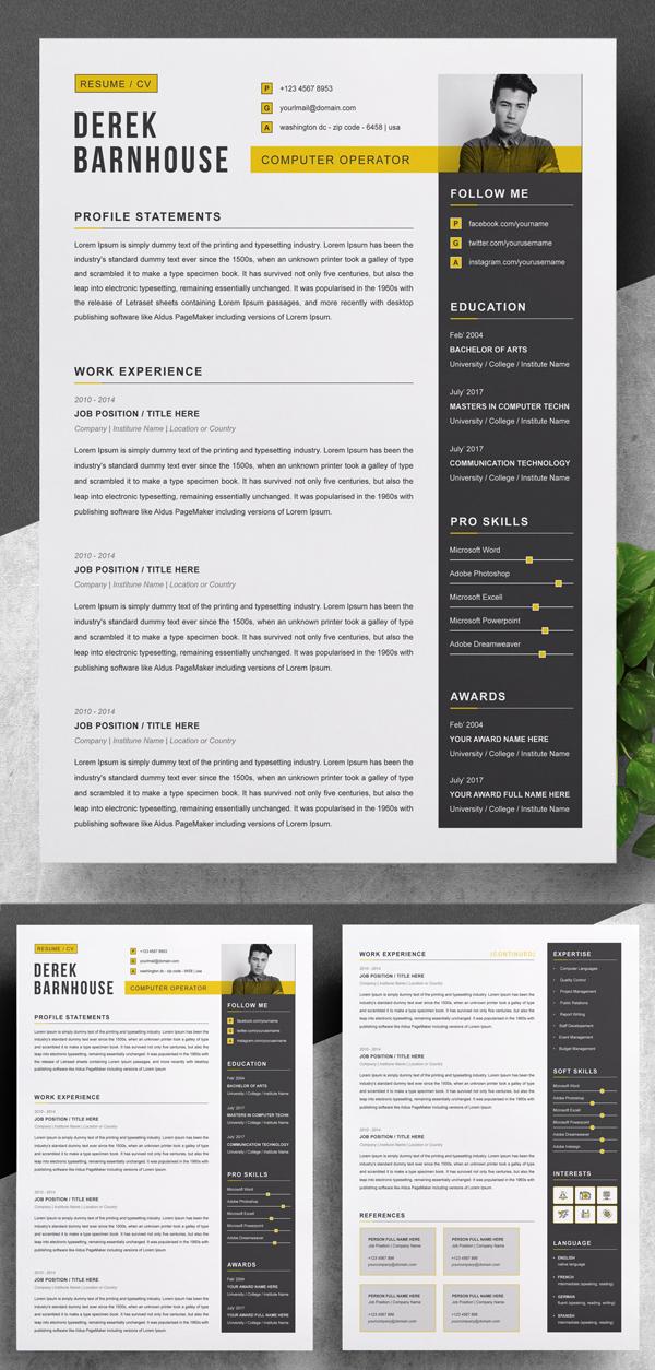 CV Template / Curriculum