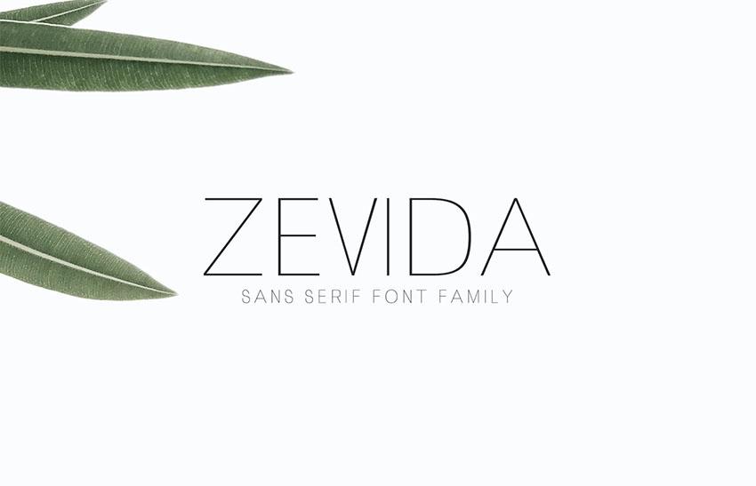 Zevida Minimalist Sans Serif Font Family