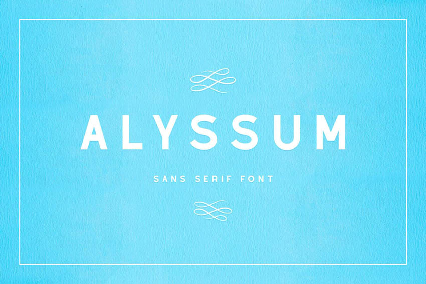 Alyssum Simple Modern Fonts