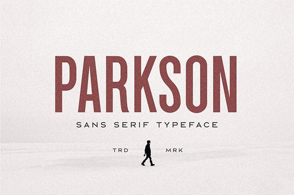 Parkson Sans Serif Font