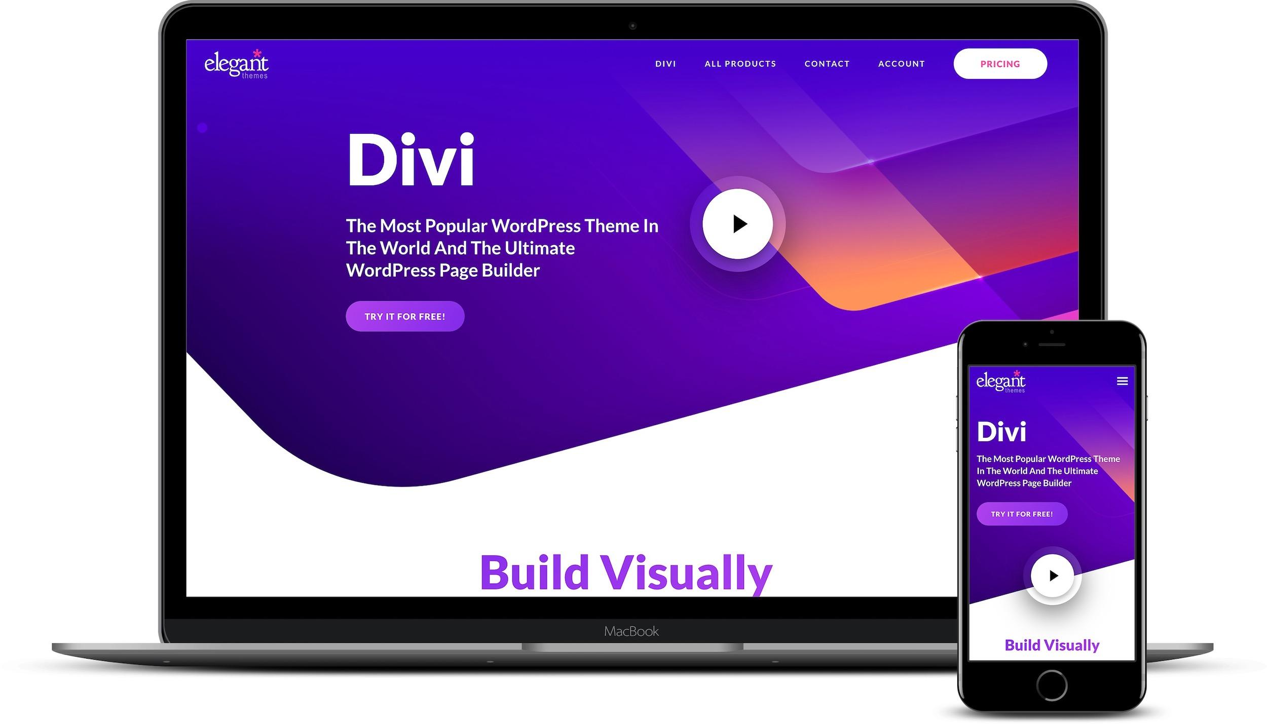 Best multilingual WordPress themes: Divi