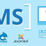 WordPress CMS Based Web Development: Best Choices of Database Plugins