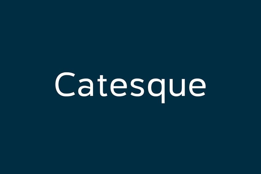 Catesque Humanist Sans Serif