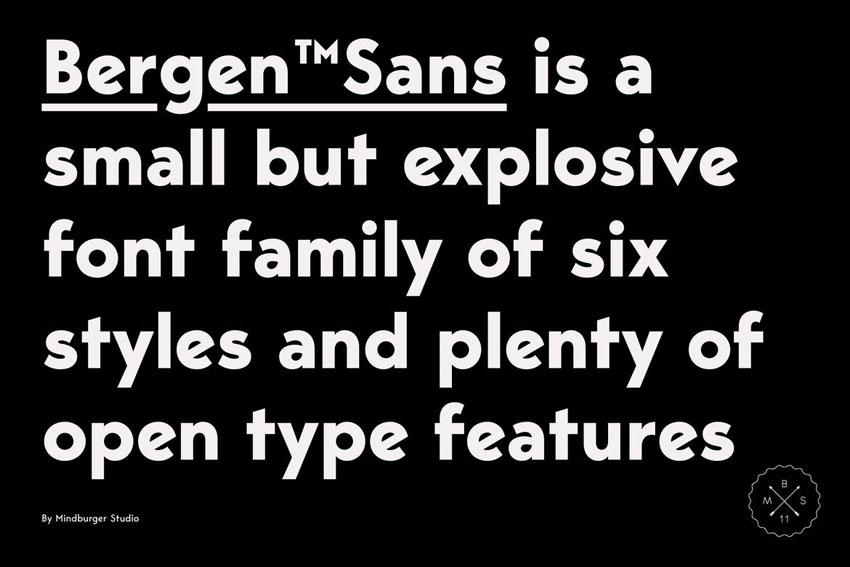 Bergen Sans Serif Font Family