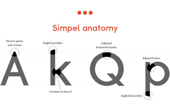 Simpel anatomy