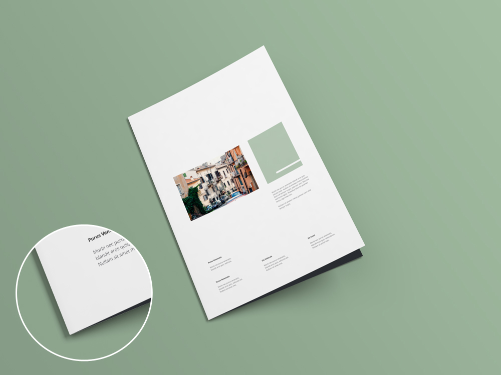 Bi-fold brochure and flyer mockup