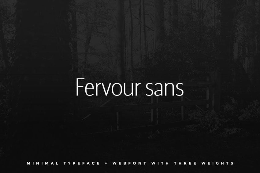 Fervour Sans Typeface Web Fonts with 3 Weights