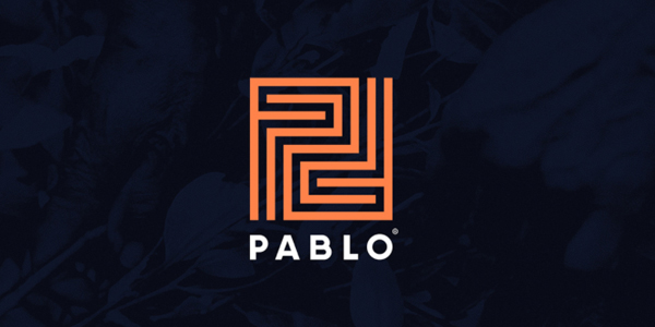Logo - Pablo Branding Identity by Andres Valderrama