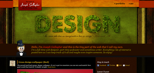 thedesignhippy
