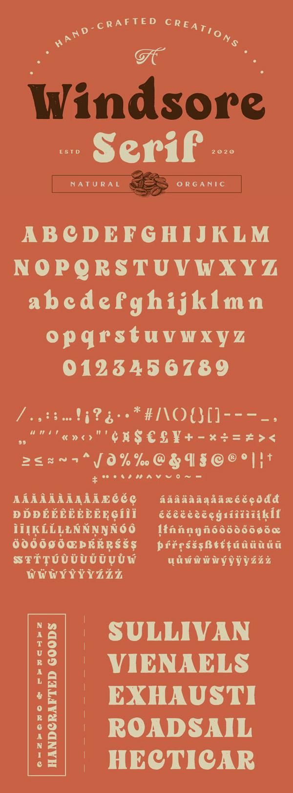 Windsore Serif Font