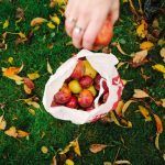 6 Ways to Optimize Your Home Orchard