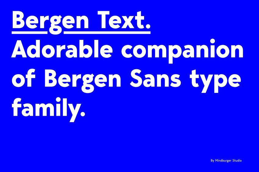 Bergen Text, fonts like Arial