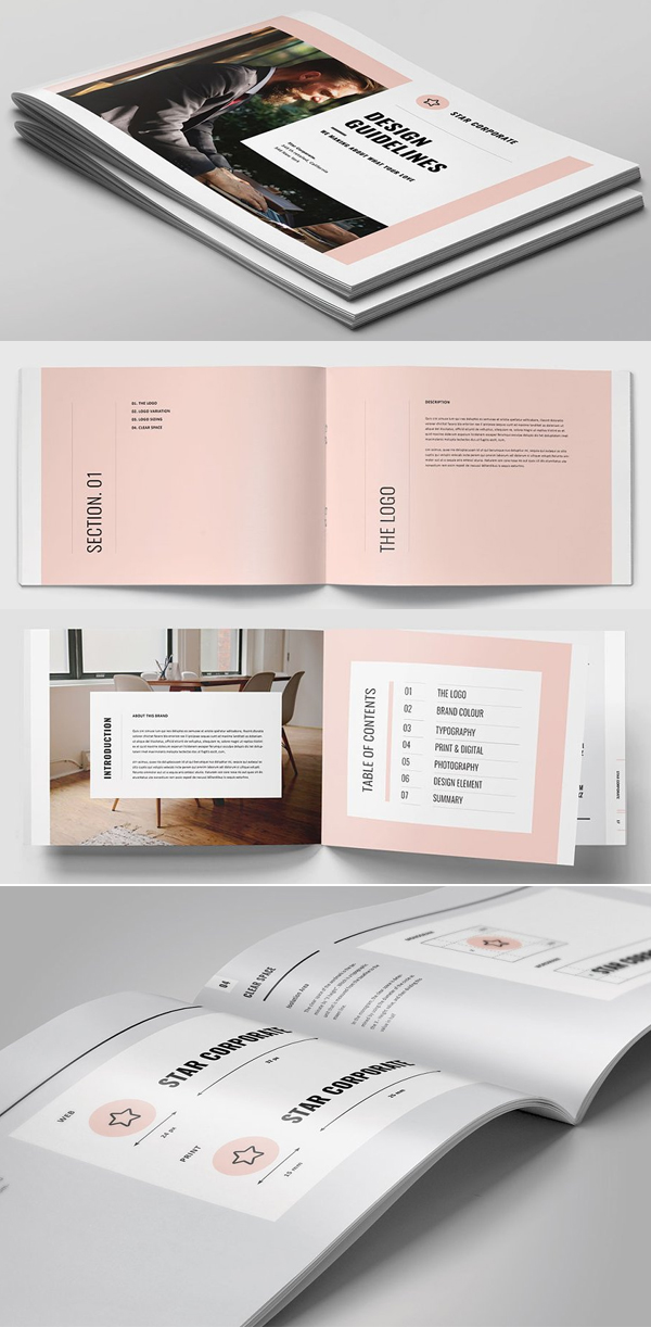 Profesional Brand Guidelines