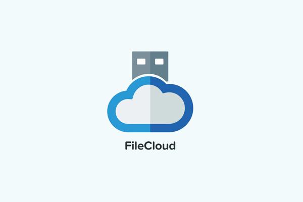 File Cloud Logo Template