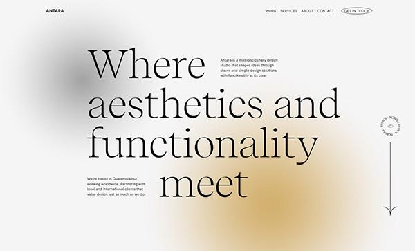 Antara Studio - Award Winner Web Design Example - 13