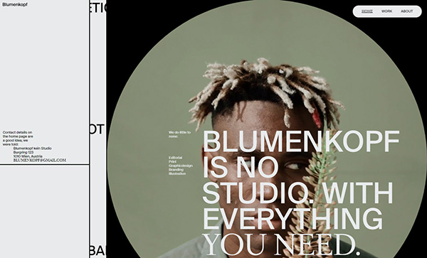 Blumenkopf - Award Winner Web Design Example - 2