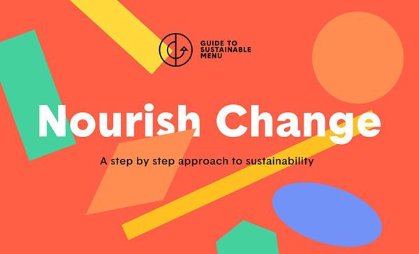 Nourish Change - Award Winner Web Design Example - 28